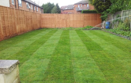Fresh Laid Lawns in Hinckley