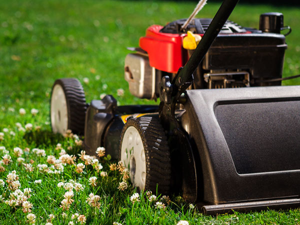 Where to Get Garden Machinery Serviced in Leicestershire